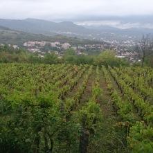 Vue sur Romagnat et ses vignes - crédits A.C.