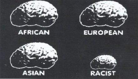 racisme-lebruitetlafureur.fr_