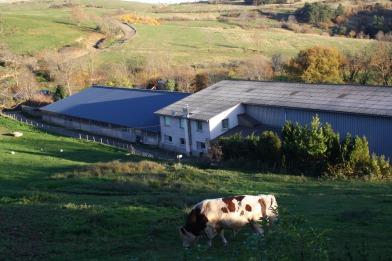 La ferme Bellonte de St Nectaire - crédits photos TBlanc